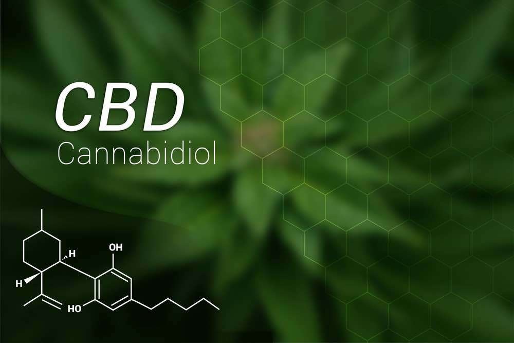 CBD oil is applied for reducing pain
